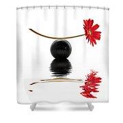 White Zen Gerbera Shower Curtain