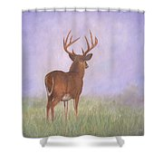Whitetail Shower Curtain by David Stribbling