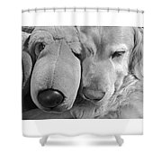 Who Has The Biggest Nose Golden Retriever Dog  Shower Curtain