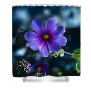 Who You Calling A Pansy? Shower Curtain