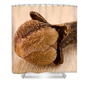 Whole Clove Shower Curtain