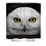 Whoooo's There?  Shower Curtain