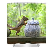 Who's Been In The Cookie Jar? Shower Curtain