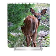 Who's There? Shower Curtain