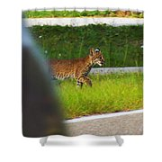 Why Did The Bobcat Cross The Road Shower Curtain