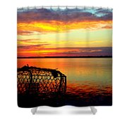 Why Men Fish Shower Curtain