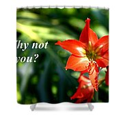 Why Not You Shower Curtain