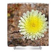 Wickiup Wild Flower Shower Curtain
