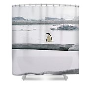 Wide Open Spaces... Shower Curtain