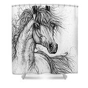 Wieza Wiatrow Polish Arabian Mare  Drawing 1  Shower Curtain