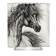Wieza Wiatrow Polish Arabian Mare Drawing Shower Curtain