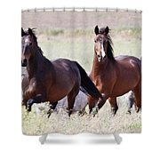 Wild And Free In The Field Shower Curtain