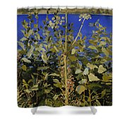 Wild Angelica Shower Curtain