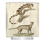 Wild Animals Shower Curtain