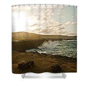 Wild Aruba Shower Curtain