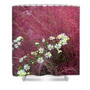 Wild Asters And Muhly Grass Shower Curtain