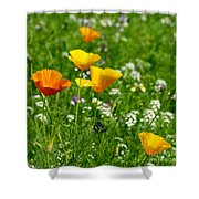 Poppies 3 - Wild At Heart Shower Curtain