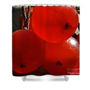 Wild Berries Of The Wetlands 3 Shower Curtain