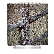 Wild Berries On Fence Shower Curtain