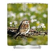 Wild Birds - Field Sparrow Shower Curtain