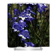 Wild Blue Bells Shower Curtain