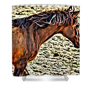 Wild Bronc Shower Curtain