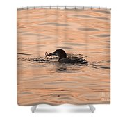 Wild Caught Shower Curtain