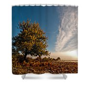 Wild Cherry Shower Curtain by Davorin Mance