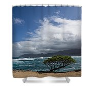 Wild Coast - Laie Point - North Shore - Hawaii Shower Curtain