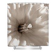 Wild Daffodil Shower Curtain