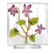 Wild Dog Violet Shower Curtain