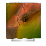 Wild Eyes Shower Curtain by Omaste Witkowski