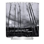 Wild Fire Aftermath In Black And White Shower Curtain