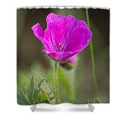 Wild Flower Bloody Geranium Shower Curtain