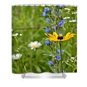 Wild Flower Delight Shower Curtain