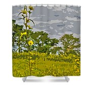 Wild Flower Field Abstract Shower Curtain