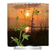 Wild Flower Ia Mlo Shower Curtain