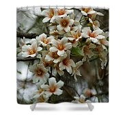Wild Flowering Beauty Shower Curtain
