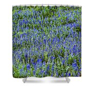 Wild Flowers Blanket Shower Curtain