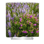 Wild Flowers Display Shower Curtain
