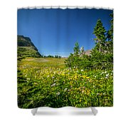 Wild Flowers Glacier National Paintedpark   Shower Curtain by Rich Franco