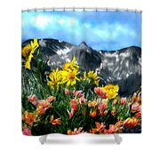 Wild Flowers In The Moutains Shower Curtain