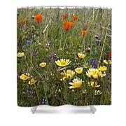 Wild Flowers Russian Ridge Shower Curtain