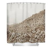 Wild Forest Retro Shower Curtain