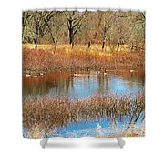 Wild Geese On The Farm Shower Curtain