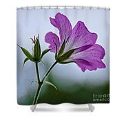 Wild Geraniums Shower Curtain
