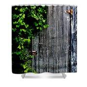 Wild Grape Vine Door Shower Curtain
