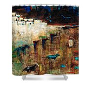 Wild Horse Canyon Shower Curtain