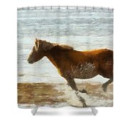 Wild Horse Running Through Water Shower Curtain