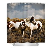 Wild Horses Mother And Child Shower Curtain